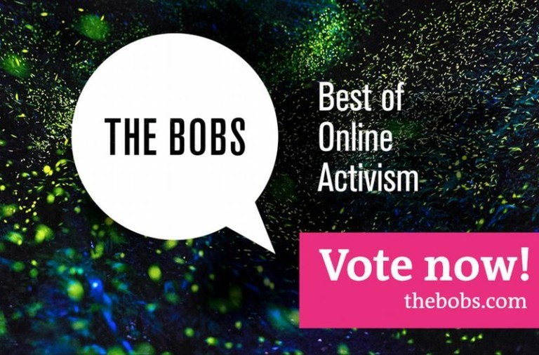 dw_thebobs_voting